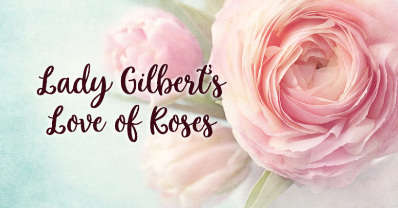 Lady Gilbert's Love of Roses