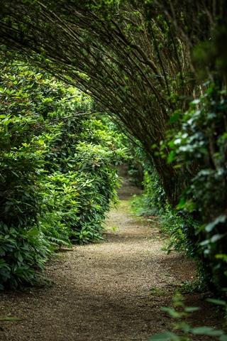 Gardens and Woodland Grounds Harrow